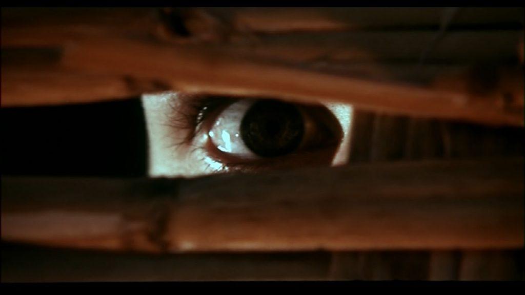 eye looks through a wall